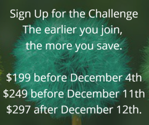 life makeover challenge pricing